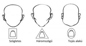 A fog formájának kiválasztása az arc formája szerint történik.